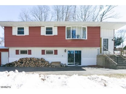 617 CARPENTERSVILLE RD  Pohatcong Township, NJ MLS# 3690597