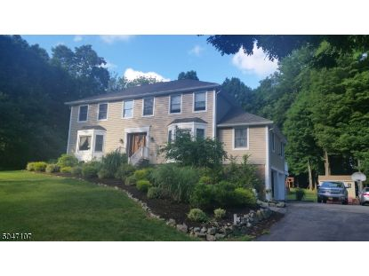 9 Dallarda Dr  Allamuchy Twp, NJ MLS# 3691263