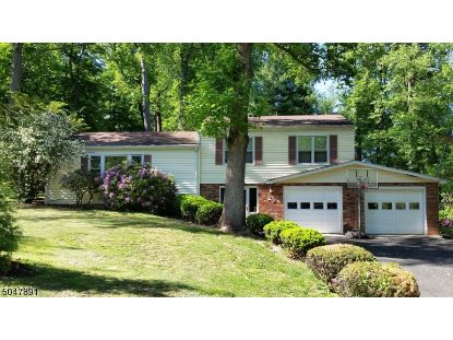 28 Orchard St  Bernardsville, NJ MLS# 3691876