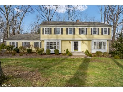 98 Tower Mountain Dr  Bernardsville, NJ MLS# 3692951