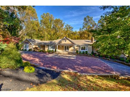 25 Jean Place  Bernardsville, NJ MLS# 3693896
