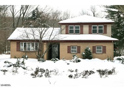 6 Stony Brook Dr  Warren, NJ MLS# 3693935