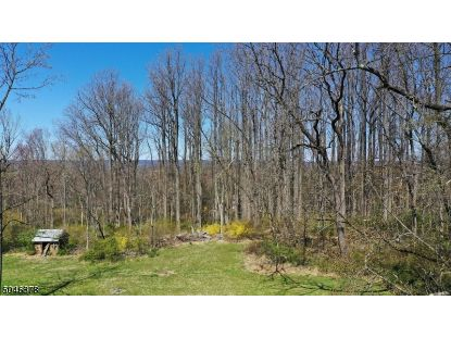 00 Pleasant Plains Road  Long Hill Twp, NJ MLS# 3701744