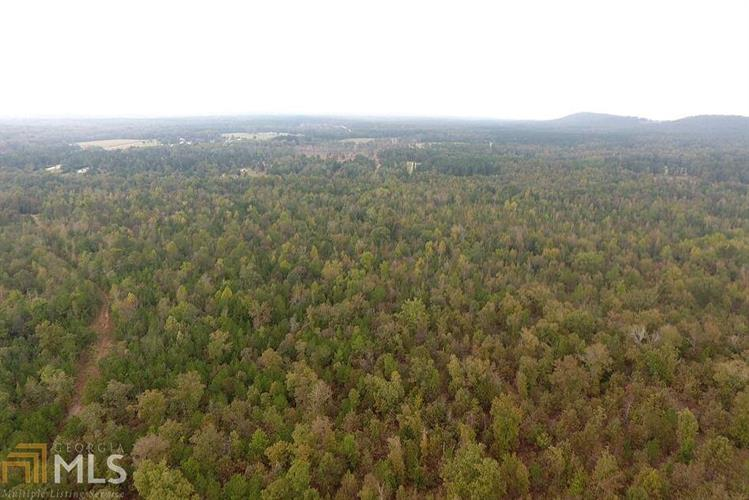 0 Firetower Rd, Thomaston, GA 30286 - Image 1