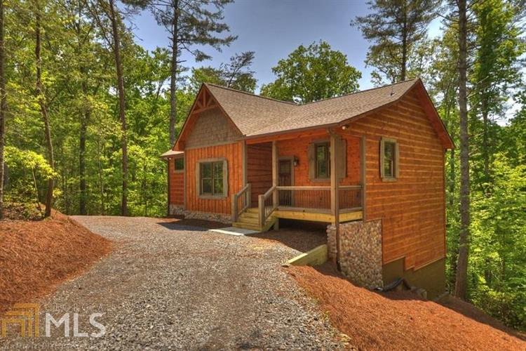 301 River Escape Dr, Cherry Log, GA 30522