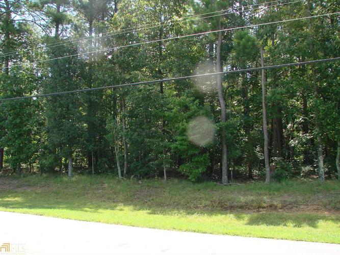 0 Tribble Mill Rd, Lawrenceville, GA 30045 - Image 1