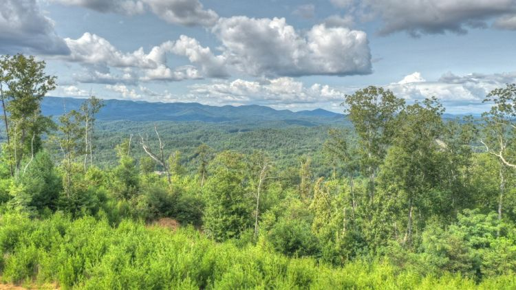 0 Dream View Dr, Ellijay, GA 30540 - Image 1