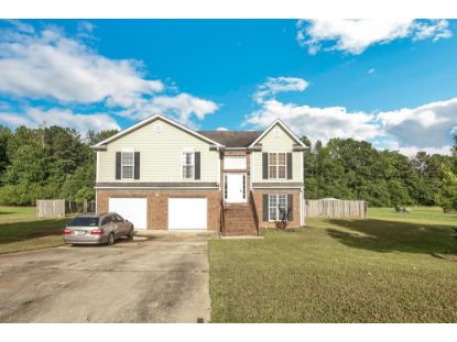 172 River Park Cir  McDonough, GA MLS# 8815656