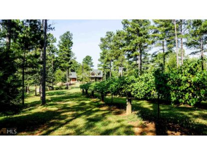 3046 Sunrise Rd  Woodland, GA MLS# 8886858