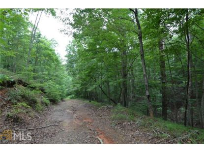 52 Camp Branch Rd  Ellijay, GA MLS# 8899648