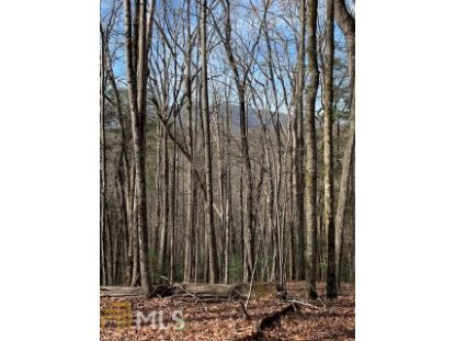 0 Big Creek Rd  Ellijay, GA MLS# 8909568