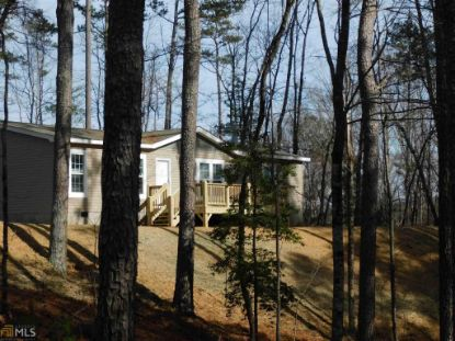 387 Lower Tails Creek Rd  Ellijay, GA MLS# 8910927