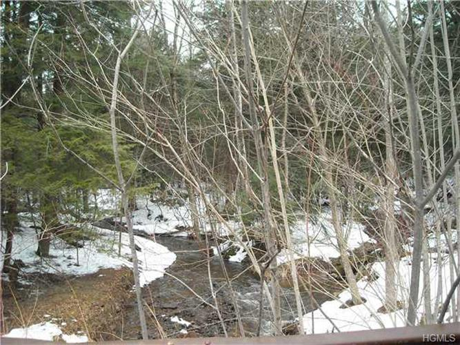Ferndale-Loomis Road, Liberty, NY 12754 - Image 2