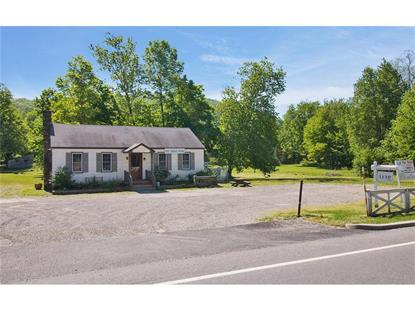 1130 Route 9d  Philipstown, NY MLS# 3325429