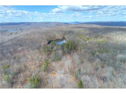105 Bundy Hill Road Holmes, NY MLS# 4552982