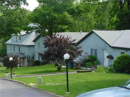 15 East Hunns Lake Road Stanfordville, NY MLS# 4644059
