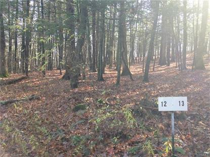 Lot #12 Troutbeck Crescent Amenia, NY MLS# 4649468