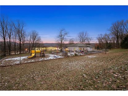 25 Lady Blue Devils  Philipstown, NY MLS# 4652486