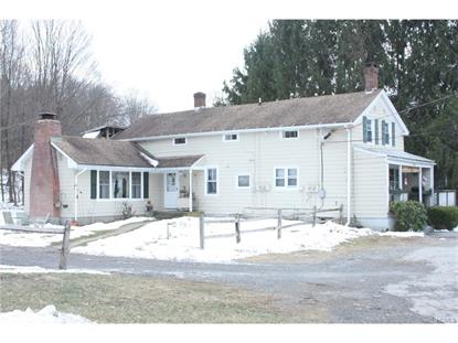28 On The Green Verbank, NY MLS# 4652639