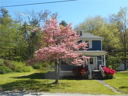 225 Pine Kill Road Westbrookville, NY MLS# 4721895