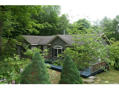 94 Parks Road Livingston Manor, NY MLS# 4827958