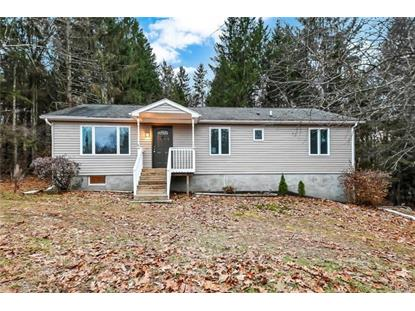 8 Black Rock Trail Port Jervis, NY MLS# 4853931