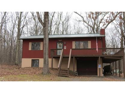 197 Riverview Drive Lackawaxen, PA MLS# 4855430