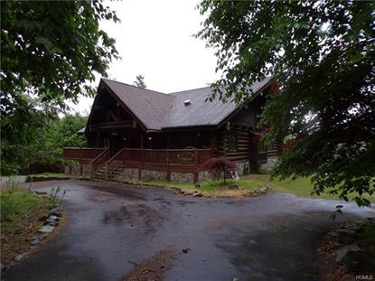 11 Caskey Road Glen Spey, NY MLS# 4901234