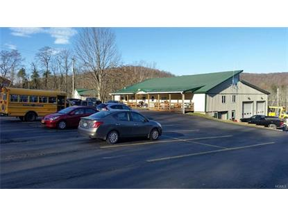 2623 State Route 52  Liberty, NY MLS# 4901346