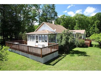 755 County Road 114  Cochecton, NY MLS# 4901446