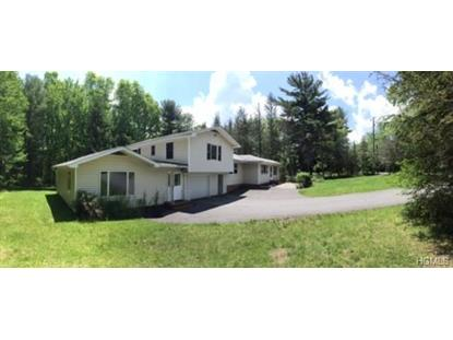 446 High Road Glen Spey, NY MLS# 4902054