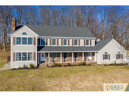 19 Beavers Road Califon,NJ MLS#2010415