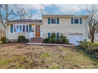 172 Norris Avenue Metuchen, NJ MLS# 2110327