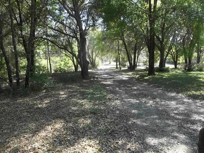 CR 455 RD, Clermont, FL 34714