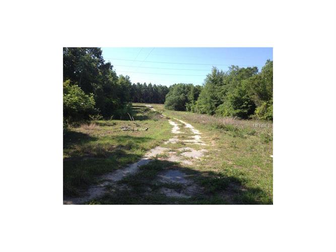 W CR 44 EAST OF FISH CAMP ROAD, Grand Island, FL 32735