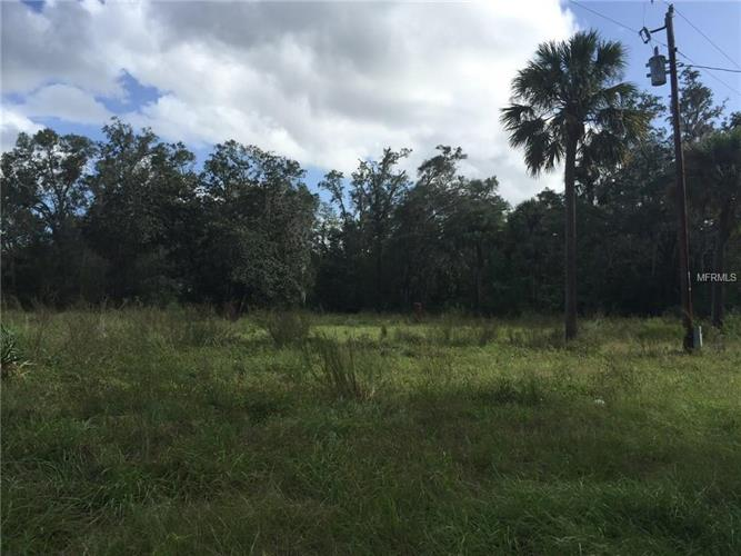 44641 STATE ROAD 19, Altoona, FL 32702