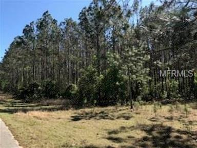 COUNTY ROAD 561, Clermont, FL 34711