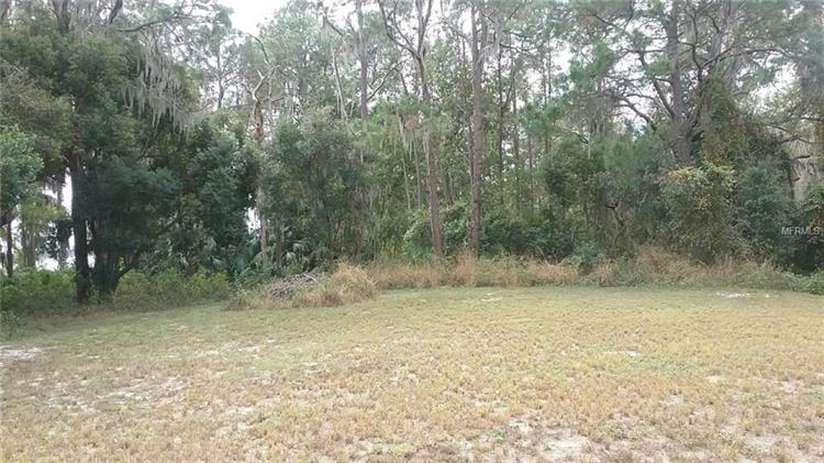 LOT 22 BLUE HERON CIR, Deer Island, FL 32778