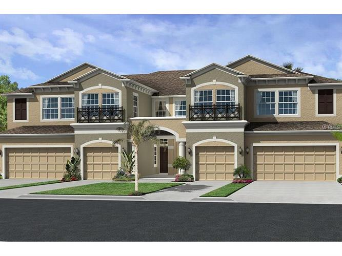 11447 CROWNED SPARROW LN #9/10, Tampa, FL 33626
