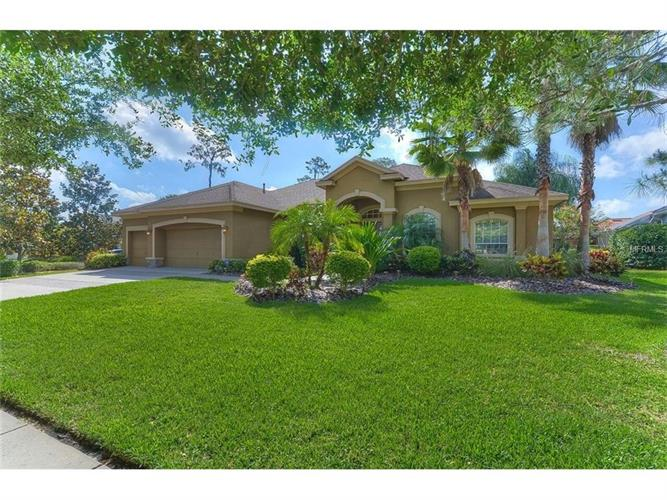 21148 SKY VISTA DR, Land O Lakes, FL 34637