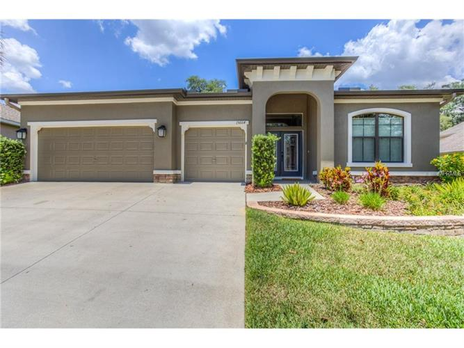 15664 STARLING WATER DR, Lithia, FL 33547