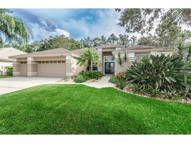 4289 AUSTON WAY, Palm Harbor, FL 34685