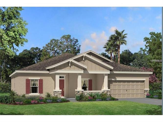 21744 INDIAN SUMMER DR, Land O Lakes, FL 34637