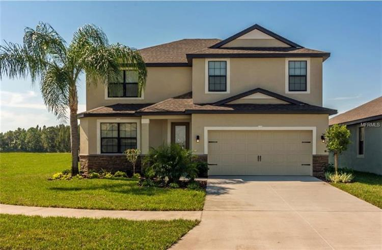 11832 VALHALLA WOODS DR, Riverview, FL 33579 - Image 1