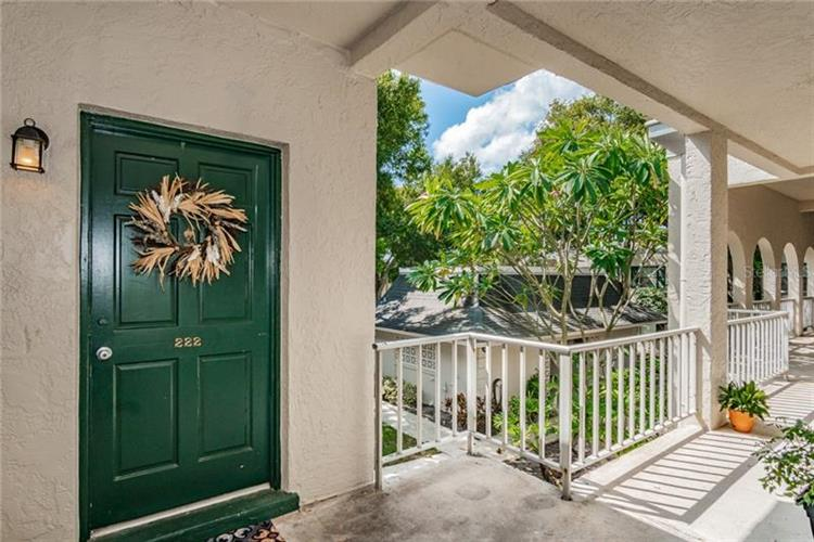 4335 AEGEAN DR #222A, Tampa, FL 33611 - Image 1