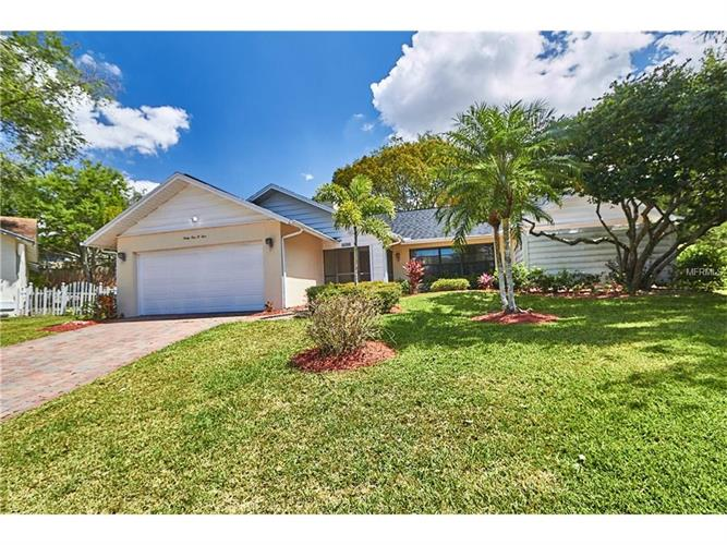 3104 HILLSIDE LN, Safety Harbor, FL 34695