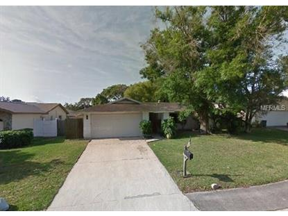 3123 TEAL TER, Safety Harbor, FL