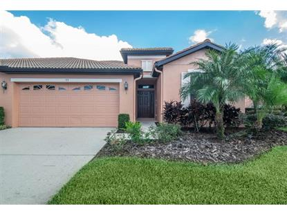 155 SHELL FALLS DR Apollo Beach, FL MLS# A4419044