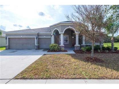 117 ORANGE MILL AVE Ruskin, FL MLS# A4424369