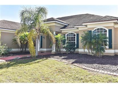 16050 WILDWOOD CT Punta Gorda, FL MLS# C7410439
